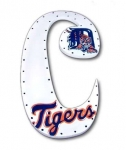 Tigers Hand Painted Wall Letters