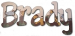 Animal Jungle Parade Hand Painted Wall Letters